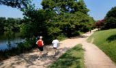 running at town lake